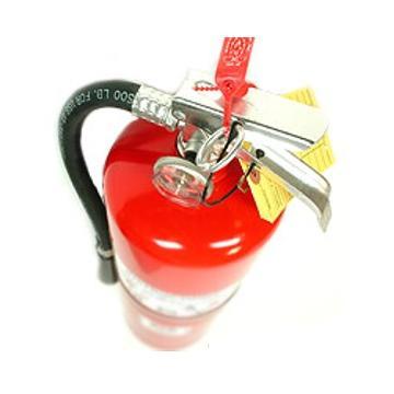 Stingatoare-de-incendiu-P1_15012_1175779252[1]